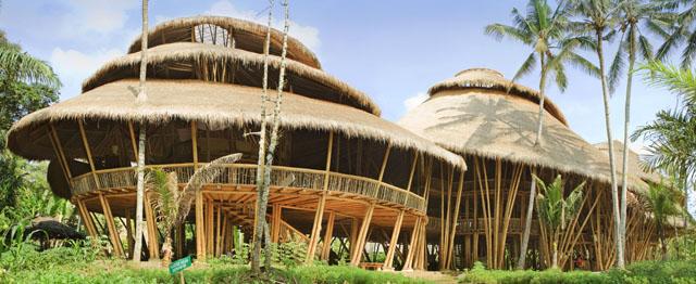 Bamboo Green-School