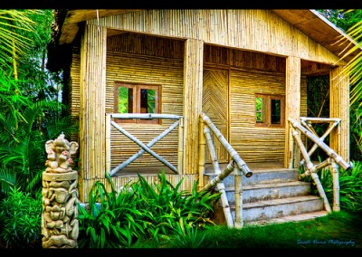 Bamboo Home Eterior
