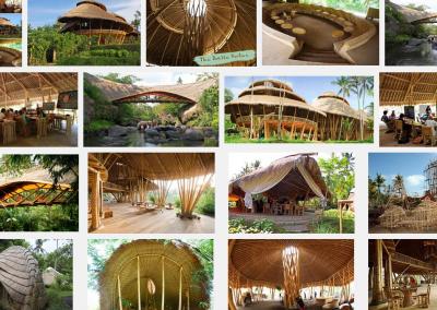 Bamboo Portfolio