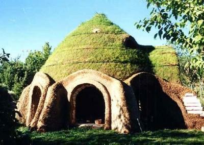 Earthbag Home Grass Roof 2
