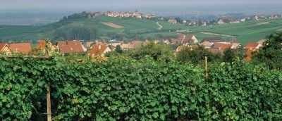 European Village on Alsace Wine Route Lorraine Zellenburg Haut Rhin