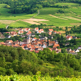 European Village on Alsace Wine Route Vignoble