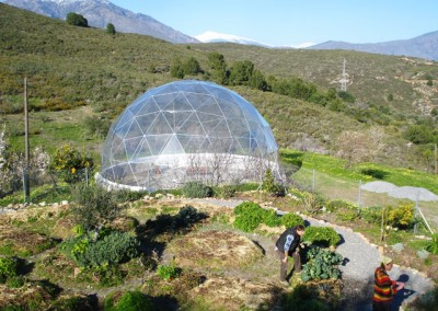 Geodesic Dome Greenhouse 1