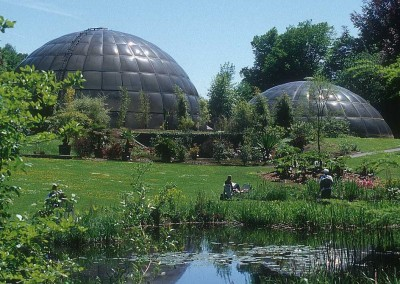 Geodesic Dome Greenhouse 3