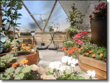 Geodesic Dome Greenhouse Interior 1
