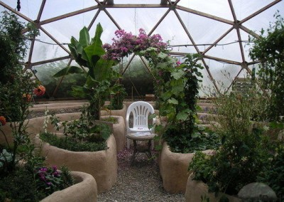 Geodesic Dome Greenhouse Interior 2