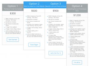 New Website Pricing table