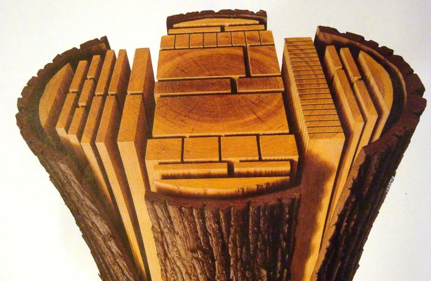 Wood From Trees ~ Wood kirk nielsen